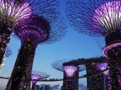 Nachhaltig investieren in Asien