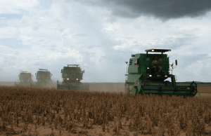 China Wirtschaft: gestiegene Sojapreise treiben Verbraucherpreise