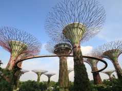 Singapur Wirtschaft - Gardens by the Bay