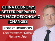 China economy 2020 - interview Robert Horrocks