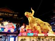 """Comgest: China - """"stark wie ein Ochse"""""""
